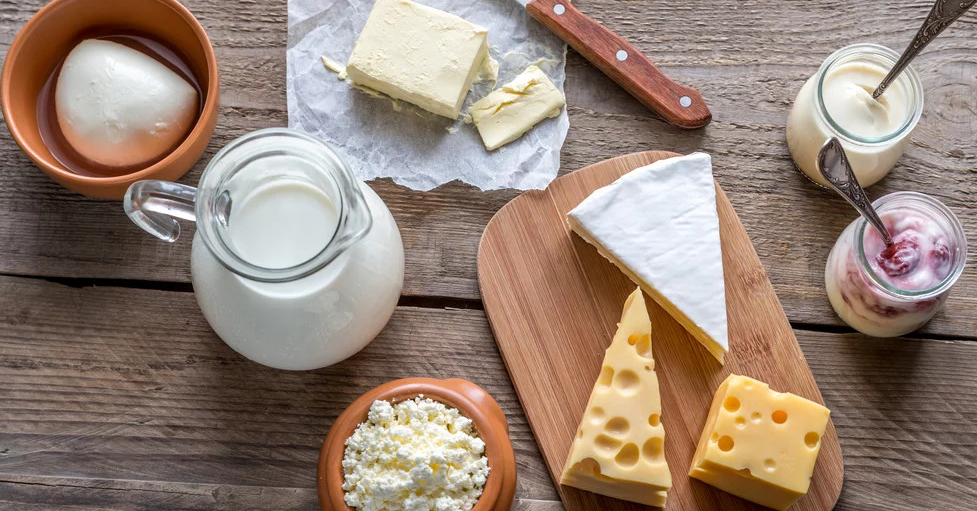 intolerancia a lactose e obesidade
