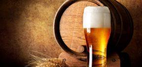 copo de cerveja em frente à um barril deitado e um ramo de cevada.